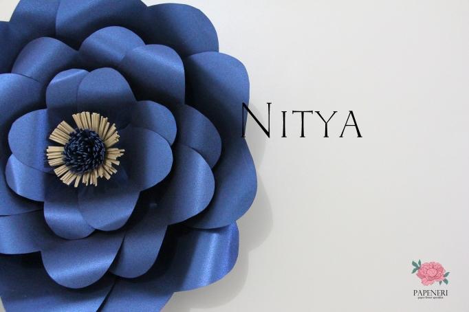 m-nitya