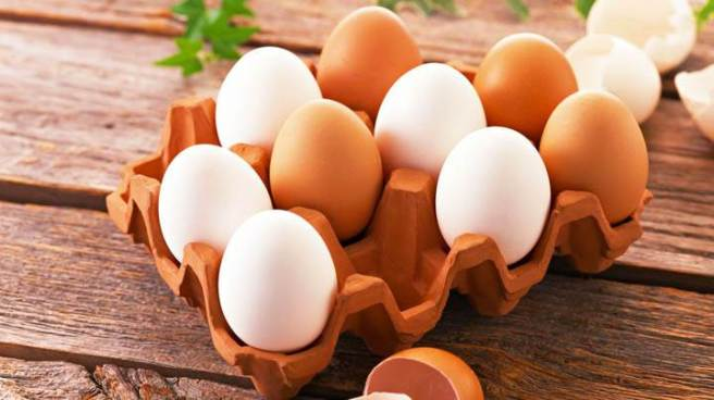 Egg-In-Tray-720x405